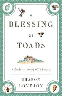 A Blessing of Toads, Sharon Lovejoy