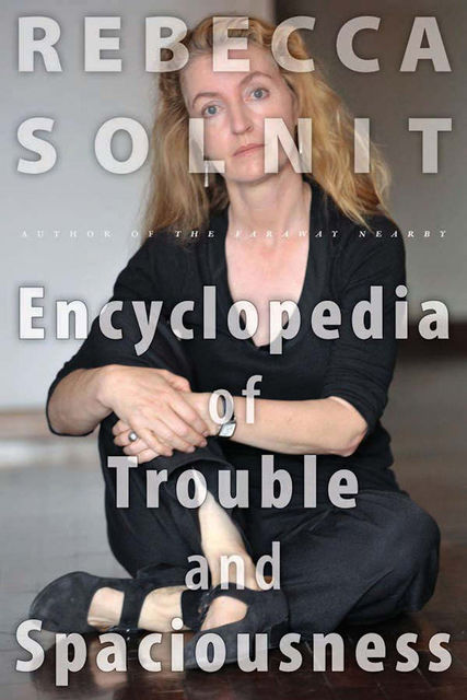 The Encyclopedia of Trouble and Spaciousness, Rebecca Solnit