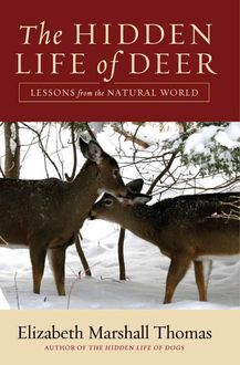 The Hidden Life of Deer, Elizabeth Marshall Thomas