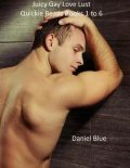 Juicy Gay Love Lust Quickie Reads Books 1 to 6, Daniel Blue