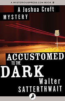 Accustomed to the Dark, Walter Satterthwait