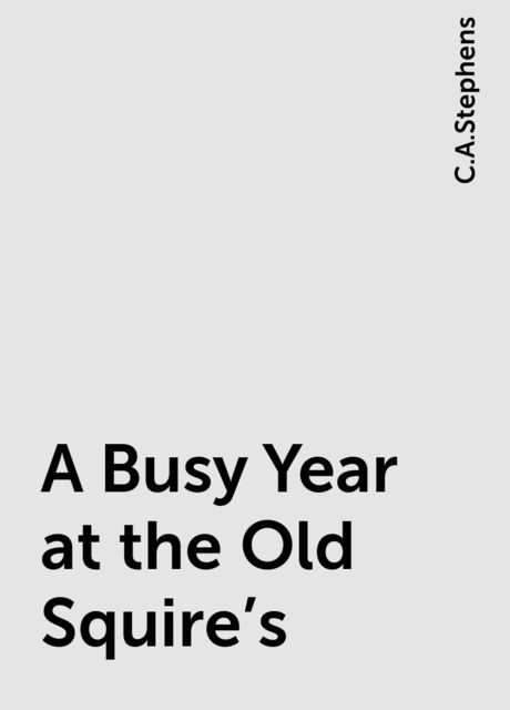 A Busy Year at the Old Squire's, C.A.Stephens
