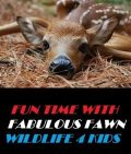 Fun Time With Fabulous Fawn Wildlife 4 Kids, Animal, Nature 4 Kids