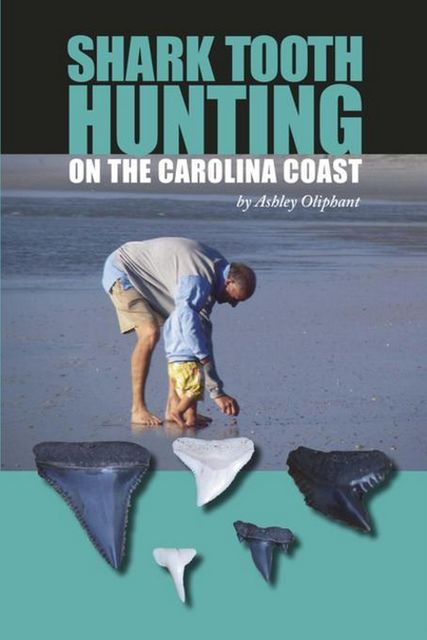 Shark Tooth Hunting on the Carolina Coast, Ashley Oliphant