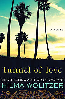 Tunnel of Love, Hilma Wolitzer