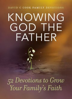 Knowing God the Father, David Cook