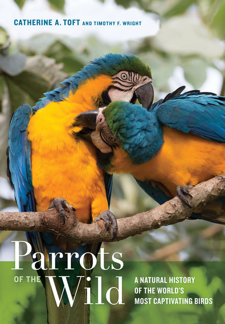 Parrots of the Wild, Timothy Wright, Catherine A. Toft