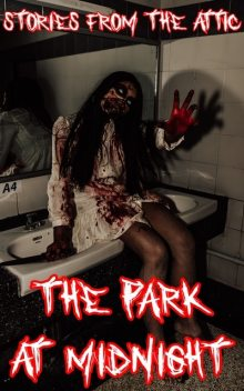 The Park at Midnight, Stories From The Attic