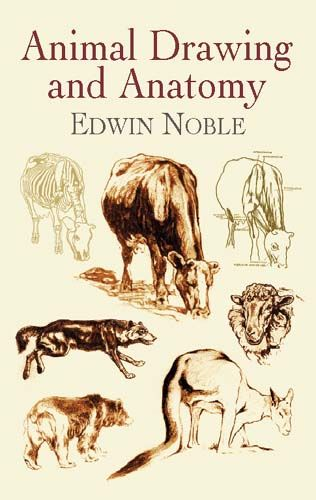 Animal Drawing and Anatomy, Edwin Noble