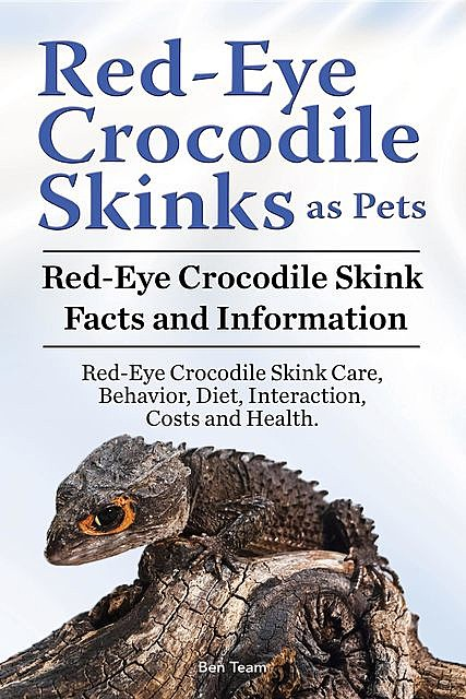 Red-Eye Crocodile Skinks as pets. Red-Eye Crocodile Skink Facts and Information. Red-Eye Crocodile Skink Care, Behavior, Diet, Interaction, Costs and Health, Ben Team