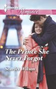 The Prince She Never Forgot, Scarlet Wilson