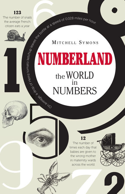 Numberland, Mitchell Symons