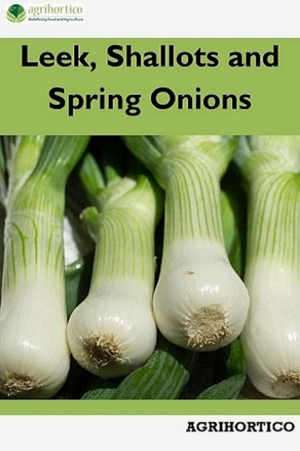 Leek, Shallots and Spring Onions, Agrihortico CPL