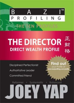 The Ten Profiles - The Director (Direct Wealth Profile), Yap Joey
