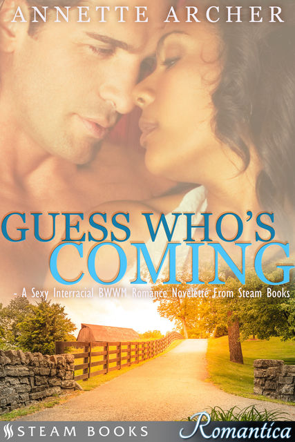 Guess Who's Coming – A Sexy Interracial BWWM Romance Novelette From Steam Books, Steam Books, Annette Archer