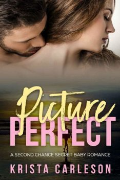 Picture Perfect: A Second Chance Secret Baby Romance, Krista Carleson