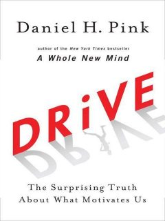 Drive: The Surprising Truth About What Motivates Us, Daniel Pink