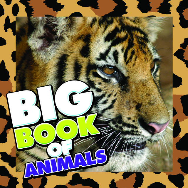 Big Book of Animals, Speedy Publishing