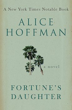 Fortune's Daughter, Alice Hoffman