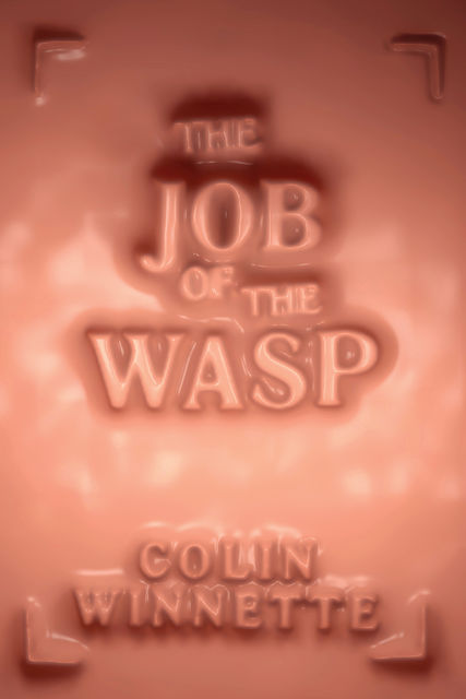 Job of the Wasp, Colin Winnette