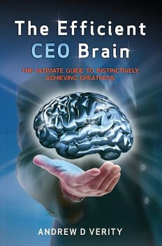 The Efficient CEO Brain, Andrew D Verity