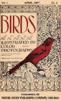 Birds, Illustrated by Color Photography, Vol. 1, No. 4 / April, 1897, Various