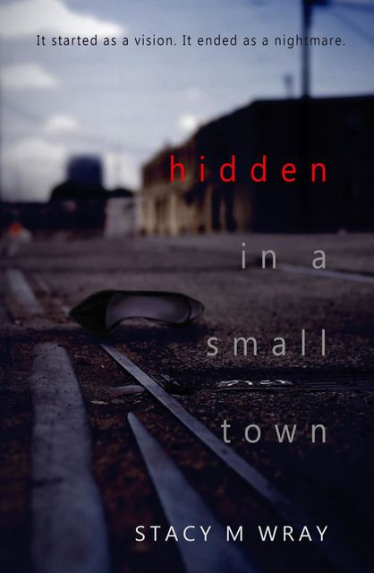 Hidden in a Small Town, Stacy M Wray