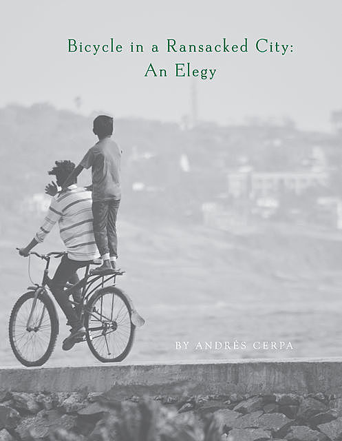 Bicycle in a Ransacked City, Andrés Cerpa