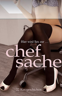 Hier wird Sex zur Chefsache, Lisa Cohen, Jenny Prinz, Marie Sonnenfeld, Nadja Tamaris, Diane Bertini, Kristel Kane, Linda Freese, Maggy Dor, Sabrina Brady, Carsten Wohlmuth, Dave Vandenberg, Dragonlady, Hannah Parker, Anita Rosenbach, Priska Apple
