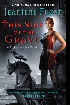 Night Huntress 07 – This Side of the Grave, Jeaniene Frost