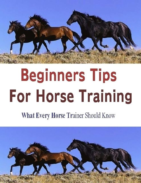 Beginners Tips for Horse Training: What Every Horse Trainer Should Know, Stacey Chillemi