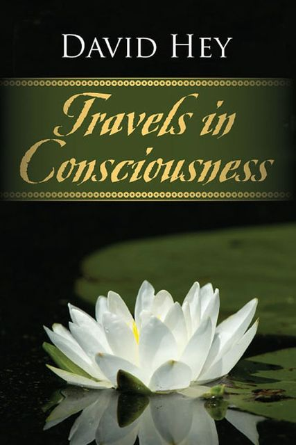 Travels in Consciousness, David Hey