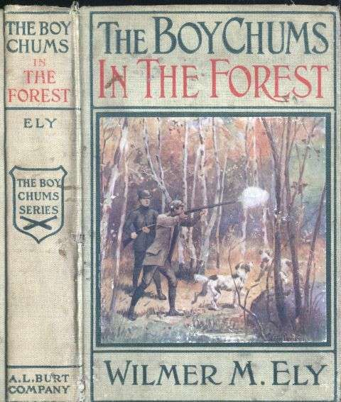 The Boy Chums in the Forest / or Hunting for Plume Birds in the Florida Everglades, Wilmer M.Ely