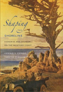 Shaping the Shoreline, Connie Y.Chiang