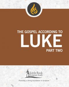 The Gospel According to Luke, Part Two, Michael Patella