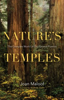 Nature's Temples, Joan Maloof