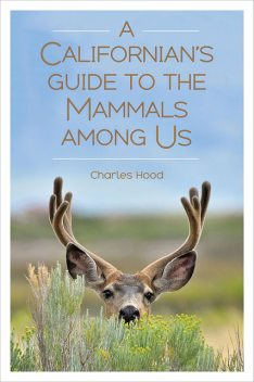 A Californian's Guide to the Mammals among Us, Charles Hood
