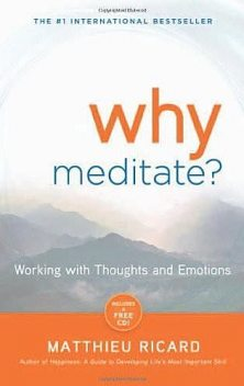 Why Meditate: Working With Thoughts and Emotions, Matthieu Ricard