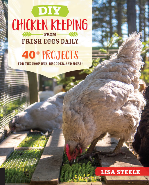 DIY Chicken Keeping from Fresh Eggs Daily, Lisa Steele