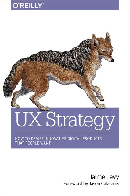 UX Strategy: How to Devise Innovative Digital Products That People Want, Jaime Levy