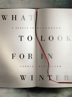 What to Look for in Winter, Candia McWilliam