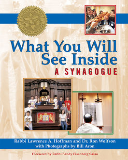 What You Will See Inside a Synagogue, Ron Wolfson, Rabbi Lawrence A. Hoffman