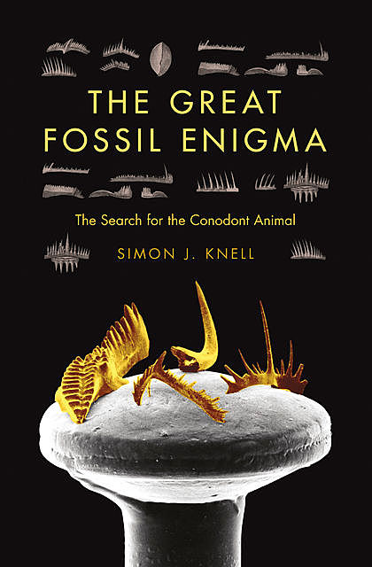 The Great Fossil Enigma, Simon J.Knell