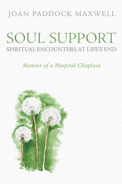 Soul Support: Spiritual Encounters at Life's End, Joan Paddock Maxwell