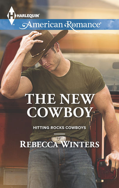 The New Cowboy, Rebecca Winters
