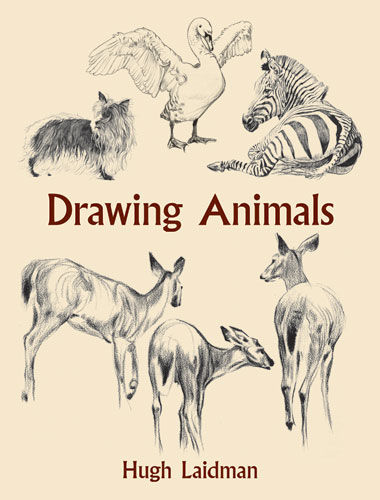 Drawing Animals, Hugh Laidman