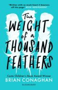 The Weight of a Thousand Feathers, Brian Conaghan