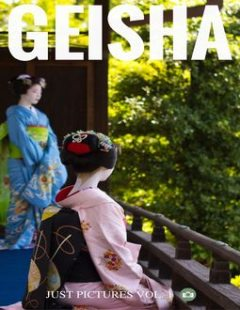 Geisha, Just Pictures