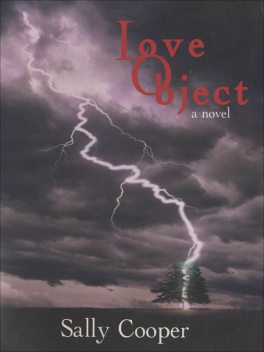 Love Object, Sally Cooper