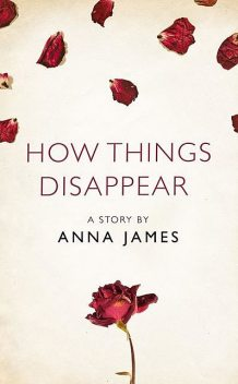 How Things Disappear, Anna James